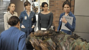 Bones 06x06 : The Shallow in the Deep- Seriesaddict